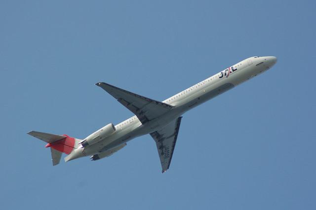 JAL MD81