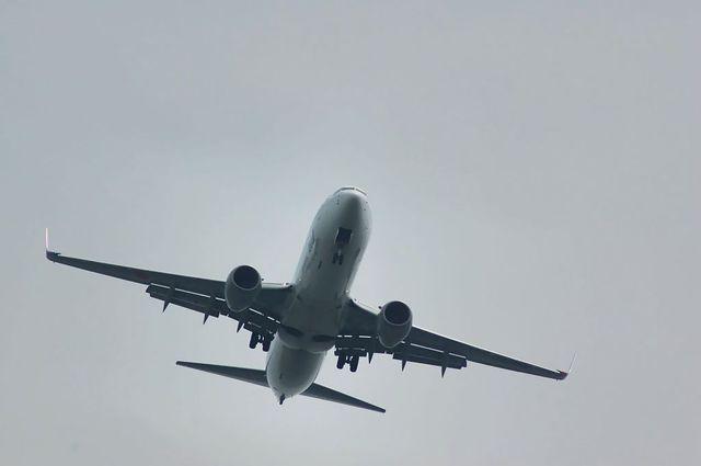 ANA Boeing737-881(JA51AN)