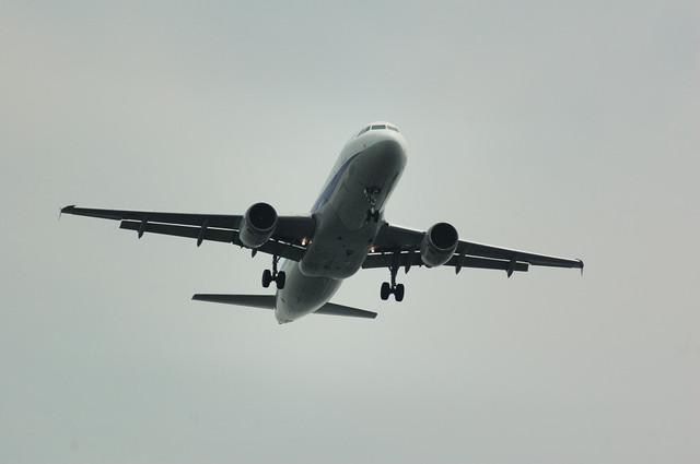 ANA Airbus A320-211(JA8385)