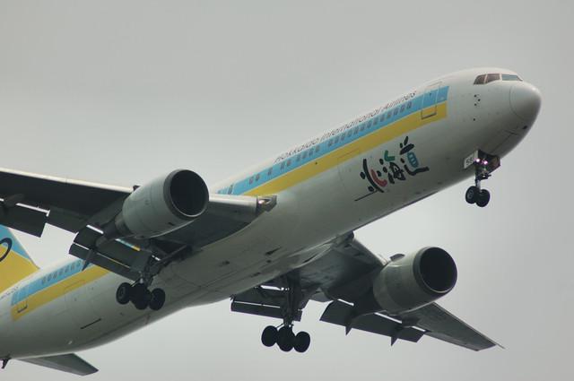 Air Do Boeing 767-381 どアップ