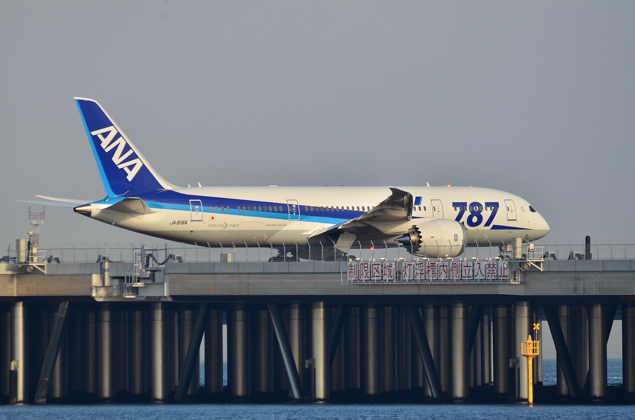 http://airman.jp/archives/2013/01/20/D72_8163187.jpg
