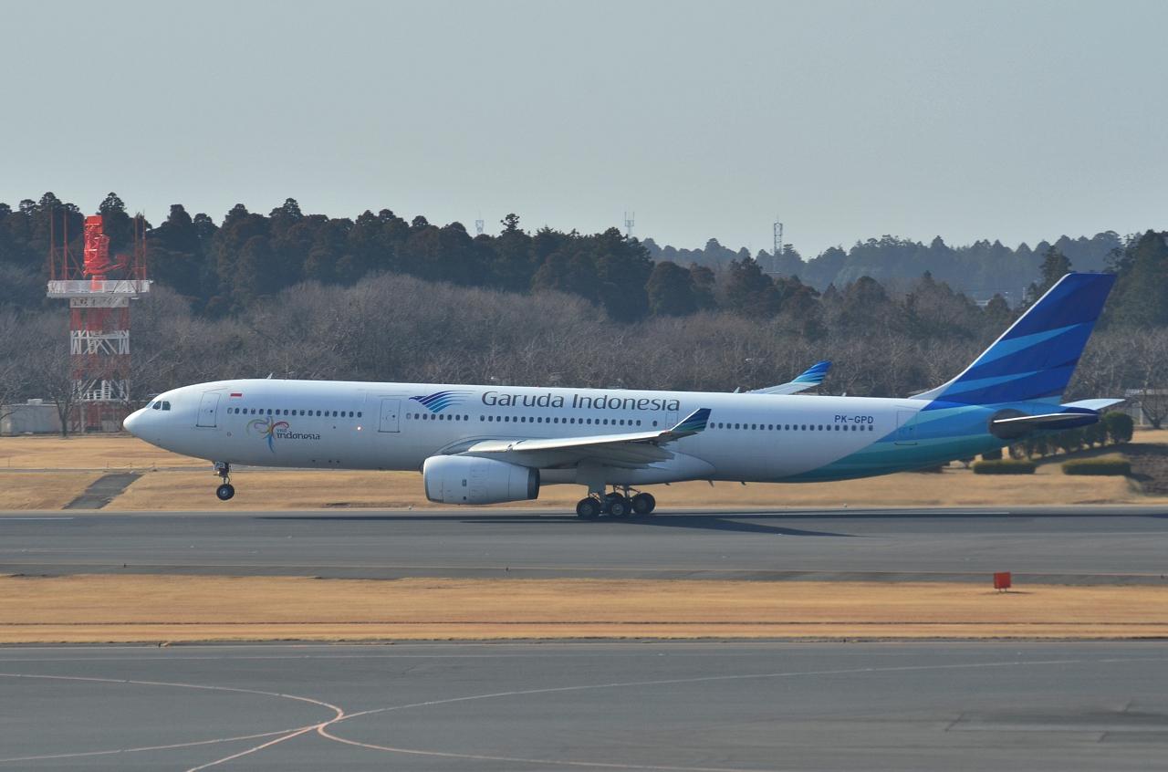 http://airman.jp/archives/2013/01/24/D72_0616.jpg