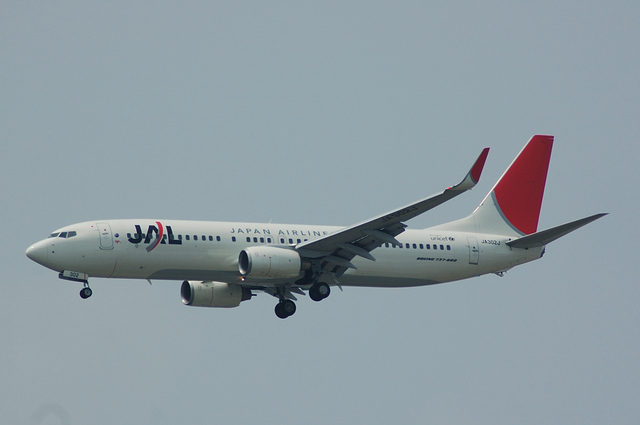 JAL Boeing737-846