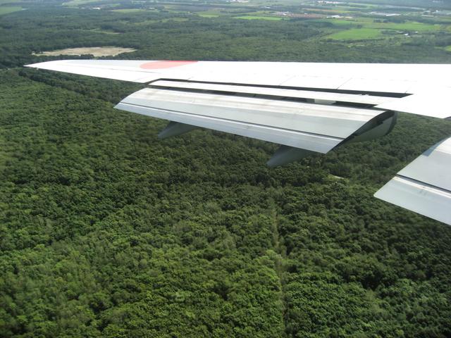 原生林の上をファイナルアプローチ