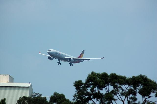 アシアナ航空 A330