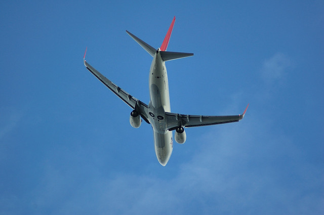 JAL Boeing737-800