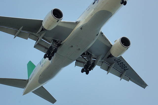 緑色の尾翼