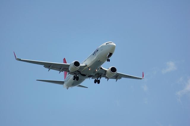 JAL Boeing737-800(JA306J)