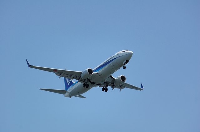 ANA Boeing737-800(JA52AN)