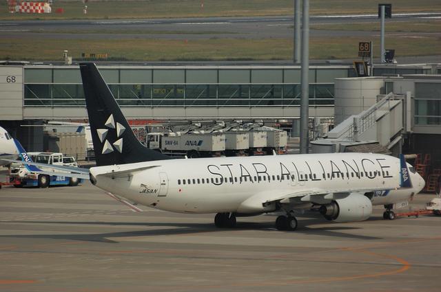 ANA Boeing737-800(JA51AN)