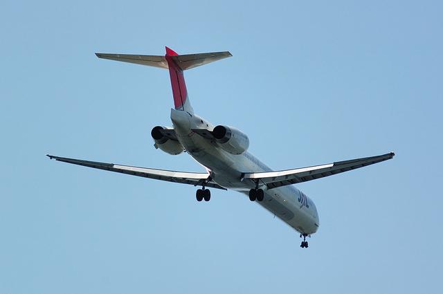 JAL MD-90-30(JA8004)