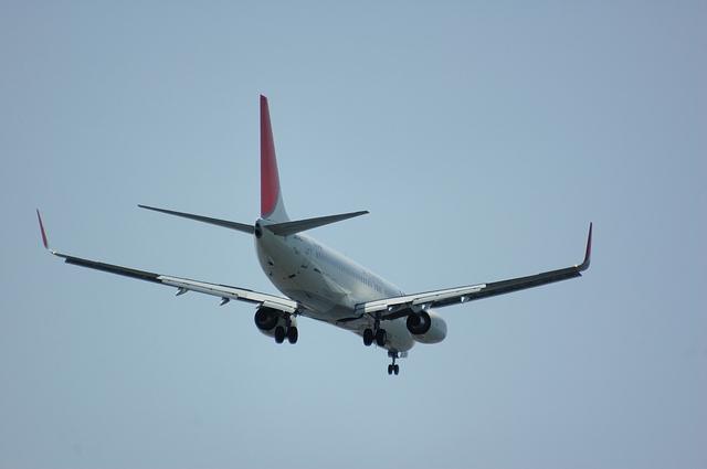 Boeing737-800 ウィングレッド