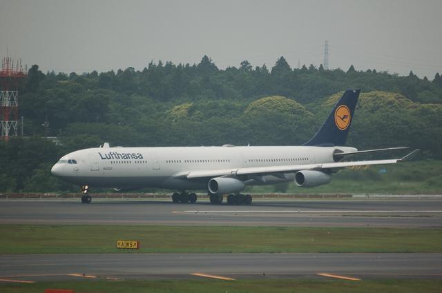 Lufthansa Airbus A340-313X  5