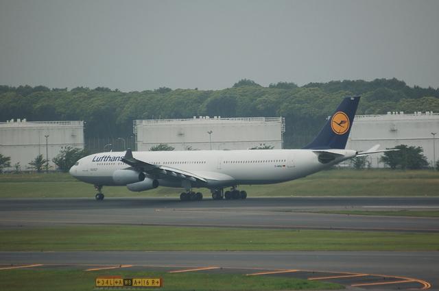 Lufthansa Airbus A340-313X  6