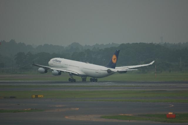 Lufthansa Airbus A340-313X  7