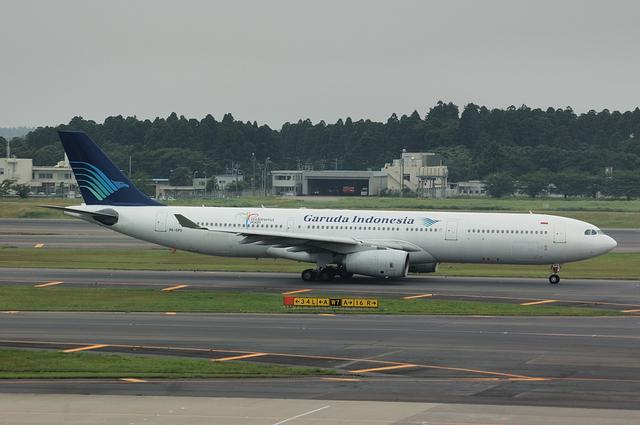 ガルーダインドネシア航空 A330-300 1