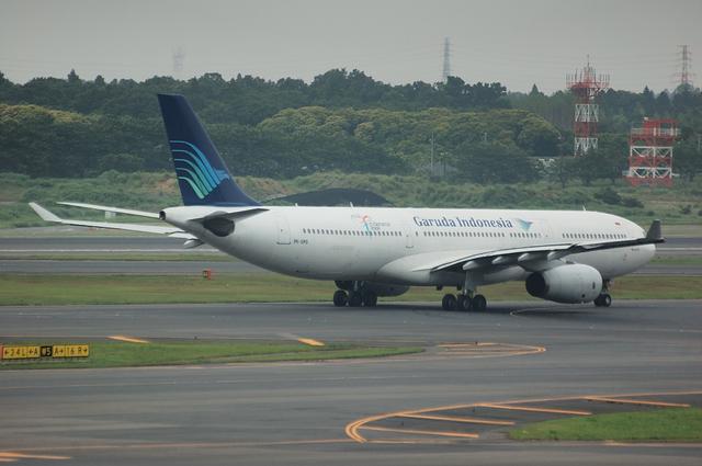 ガルーダインドネシア航空 A330-300 3