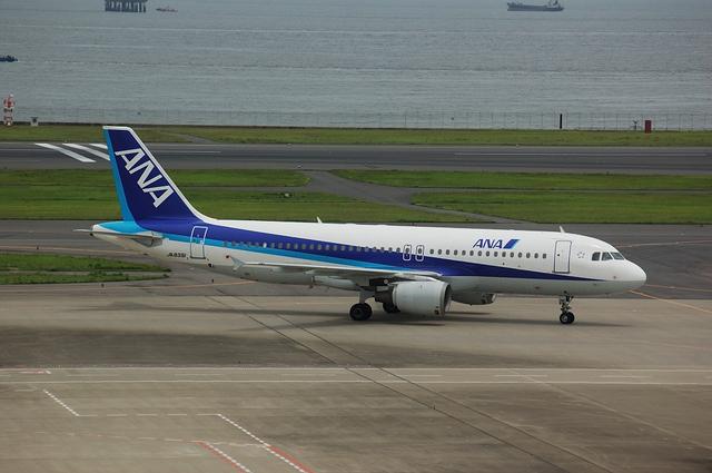 ANA A320-200(JA8391)