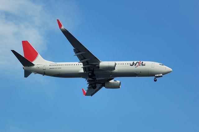 B737-800(JA307J)