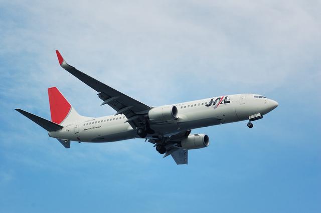 Boeing737-800(JA307J)