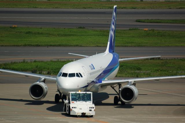 ANA Airbus A320-200(JA8396) その1