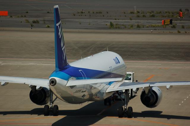 ANA Airbus A320-200(JA8396) その4