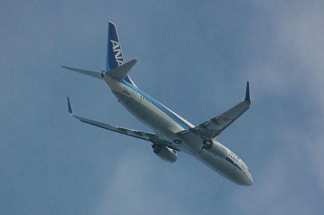 ANA Boeing737-800(JA56AN)