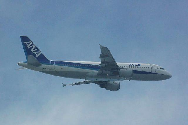 ANA Airbus A320-200(JA8400)