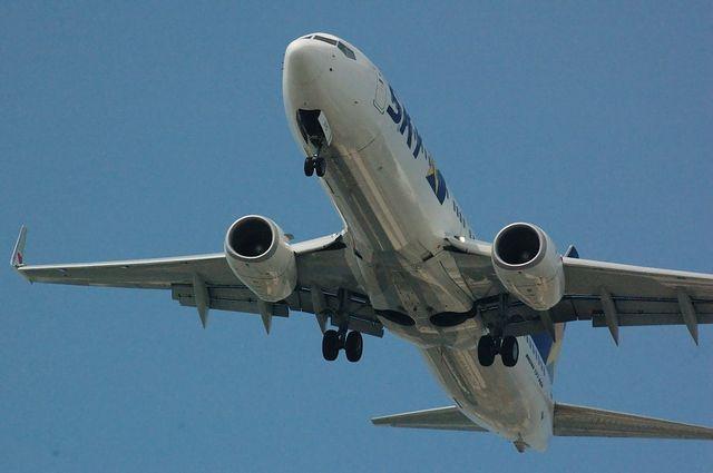 SKY Boeing737-800(JA737D)