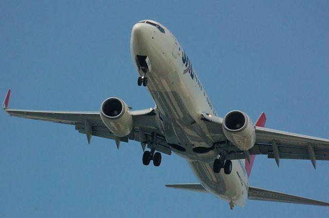 JAL Boeing737-800(JA316J)