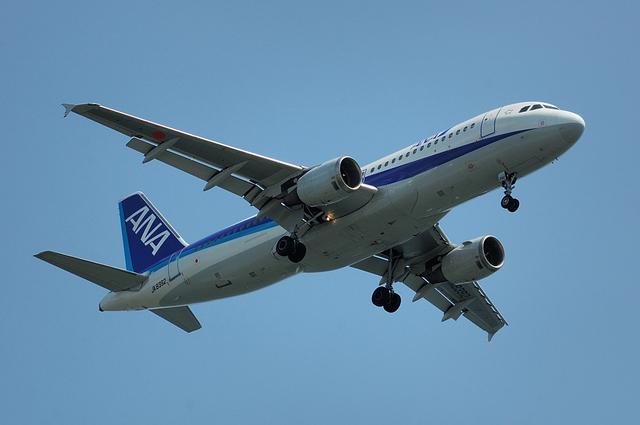 ANA Airbus A320-200(JA8392)