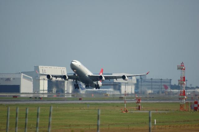 トルコ航空 Airbus A340-300 離陸