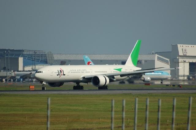 JAL エコ・ジェット(国際線)