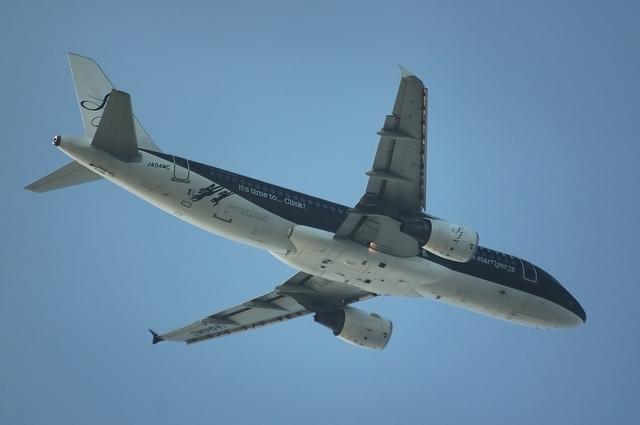 Airbus A320-200(JA04MC)