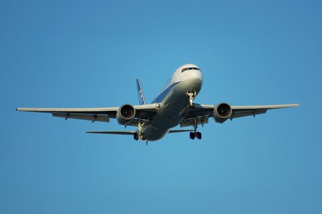 ANA Boeing767-300 1