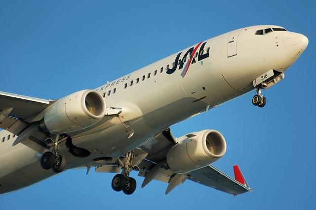 Boeing737-800(wl) JA316J