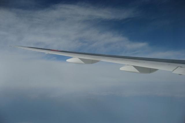 ANA256 Boeing777-200の翼