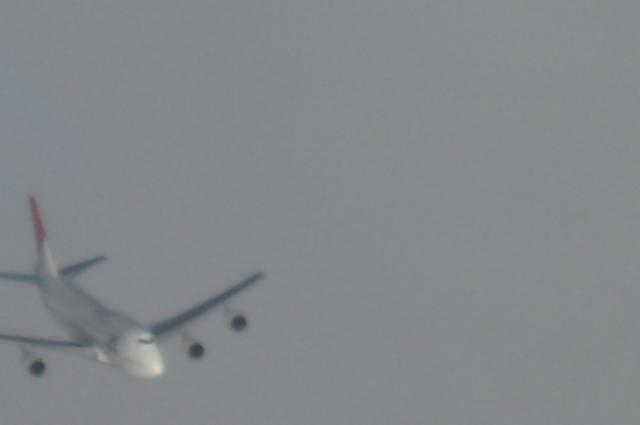 JALのBoeing747-400