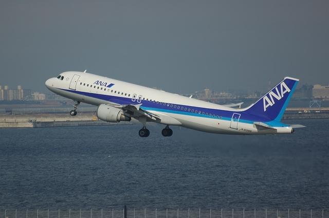 ANA Airbus A320-200(JA8396)