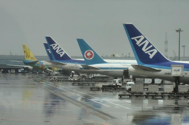 第2ターミナルに並ぶANA機