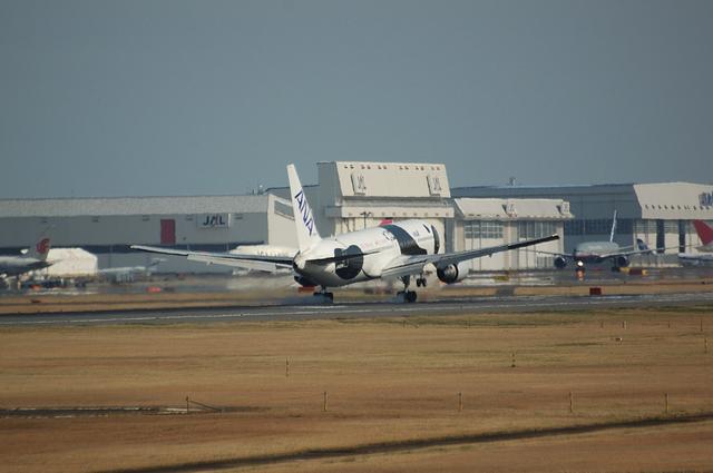 FLY!PANDA Landing