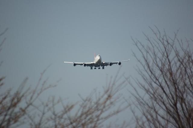 JAL Boeing747-400 Landing 1