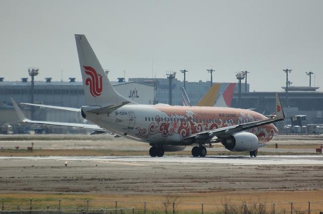 中国国際航空の牡丹特別塗装機
