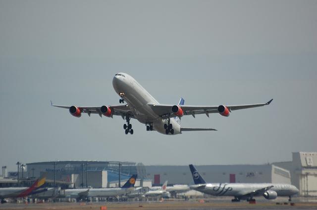 スカンジナビア航空のAirbus A340-300 1