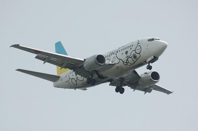 ベア・ドゥ Boeing737 2