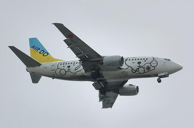 ベア・ドゥ Boeing737 3