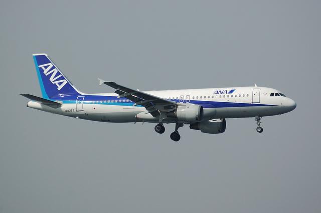 ANA Airbus A320 2