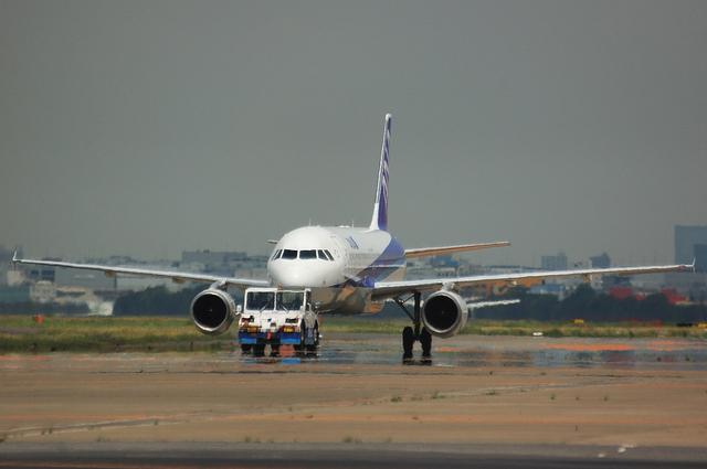 ANA A320 1
