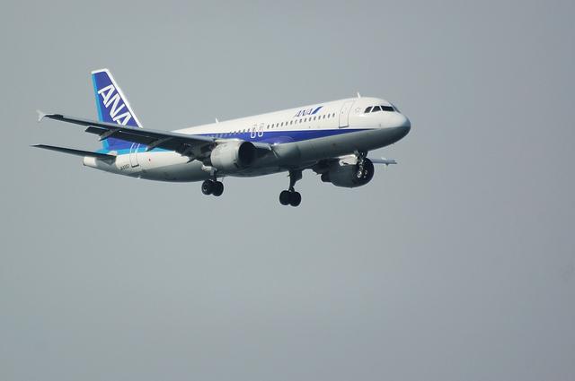ANA Airbus A320 1