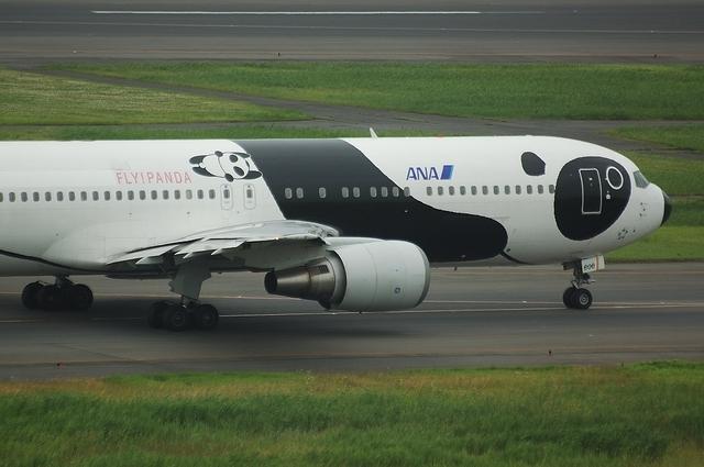 FLY!パンダ 2